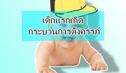 เด็กแรกเกิด กระบวนการตั้งครรภ์