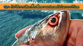 ปลา กับวิธีการเลือกซื้อเพื่อความปลอดภัยในการบริโภค